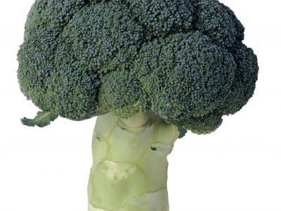 Esasem Semi Per Orto Cavolo Broccolo Parthenon F.1 032
