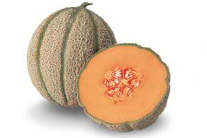 Esasem Semi Per Orto Melone 079