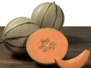 Esasem Semi Per Orto Melone Melixis F.1 083