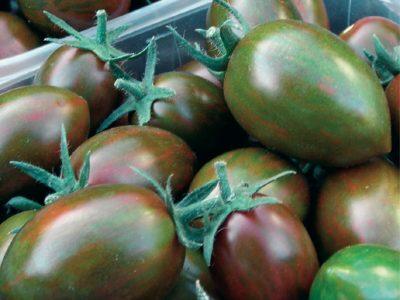 Esasem Semi Per Orto Pomodoro Specialita' Crispino Plum F.1 145