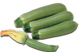 Esasem Semi Per Orto Zucchino 184