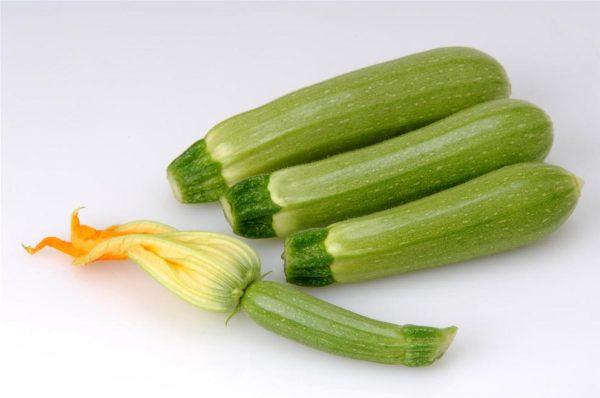 Suha F.1 Zucchino