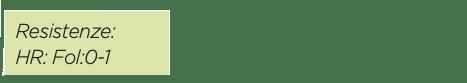 certificazione pomodoro marmande