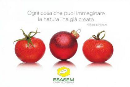 Tanti Auguri di Buon Natale a tutti Voi!    www.esasem.com