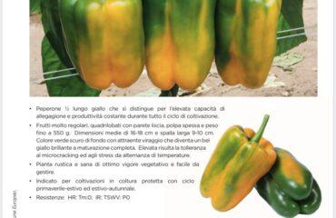 Primo week end di luglio in questa estate afosa, parliamo di #peperoni ESASEM.  ...