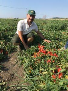 pomodori Esasem