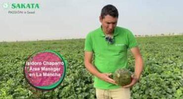 ¿Tú como abres el melón?  Our compañero Isidoro Chaparro, Area Manager of ...